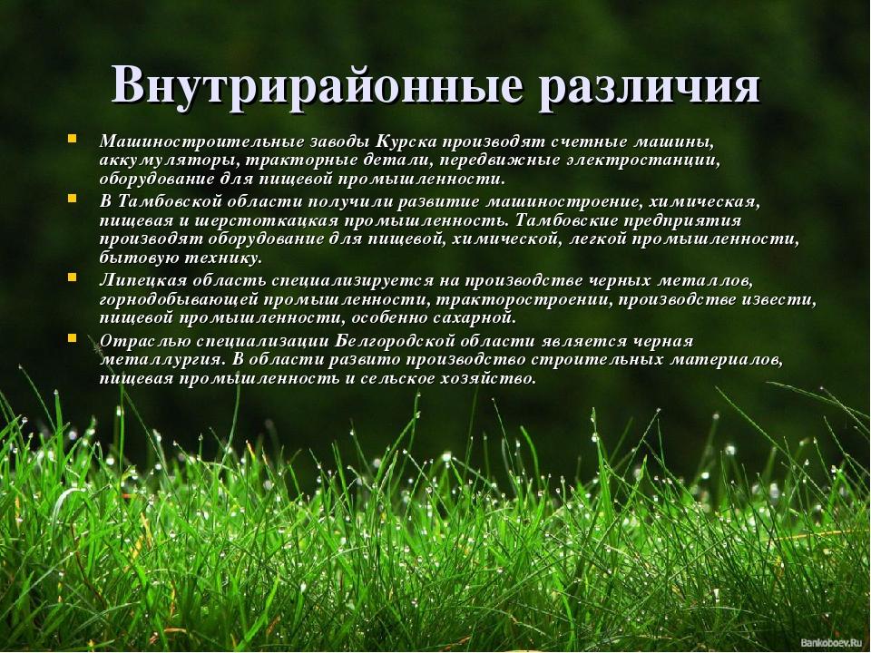 Внутрирайонные различия Машиностроительные заводы Курска производят счетные м...