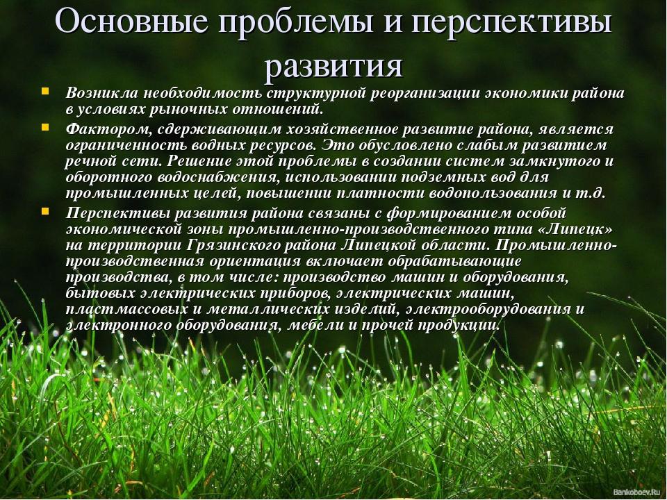Основные проблемы и перспективы развития Возникла необходимость структурной р...