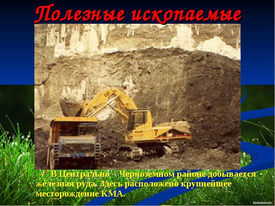 Полезные ископаемые В Центрально – Черноземном районе добывается железная руд...