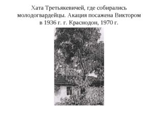 Хата Третьякевичей, где собирались молодогвардейцы. Акация посажена Виктором