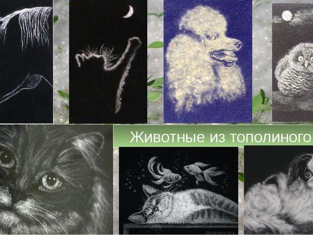 Животные из тополиного пуха