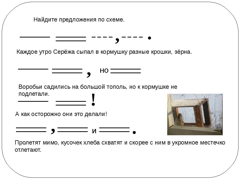 Найдите предложения по схеме. , . Каждое утро Серёжа сыпал в кормушку разные...