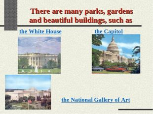 There are many parks, gardens and beautiful buildings, such as the White Hous