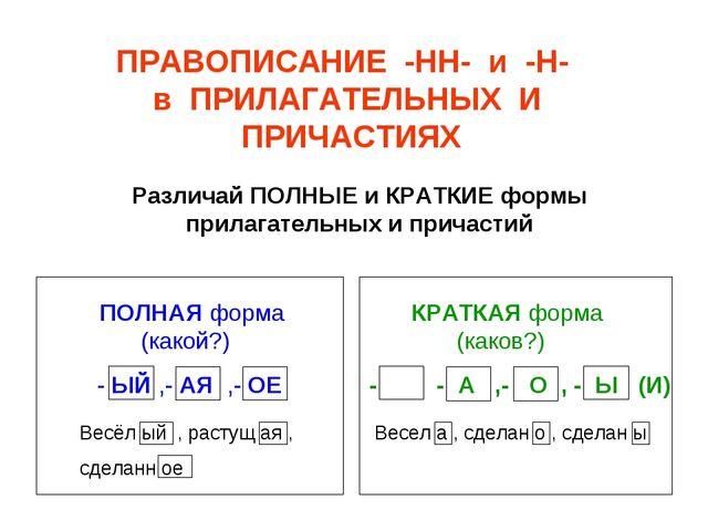 Различай ПОЛНЫЕ и КРАТКИЕ формы прилагательных и причастий ПРАВОПИСАНИЕ -НН-...