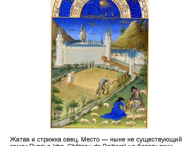 Июль Жатва и стрижка овец. Место — ныне не существующий замок Пуатье (фр. Châ...