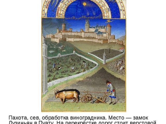 Март Пахота, сев, обработка виноградника. Место — замок Лузиньян в Пуату. На...