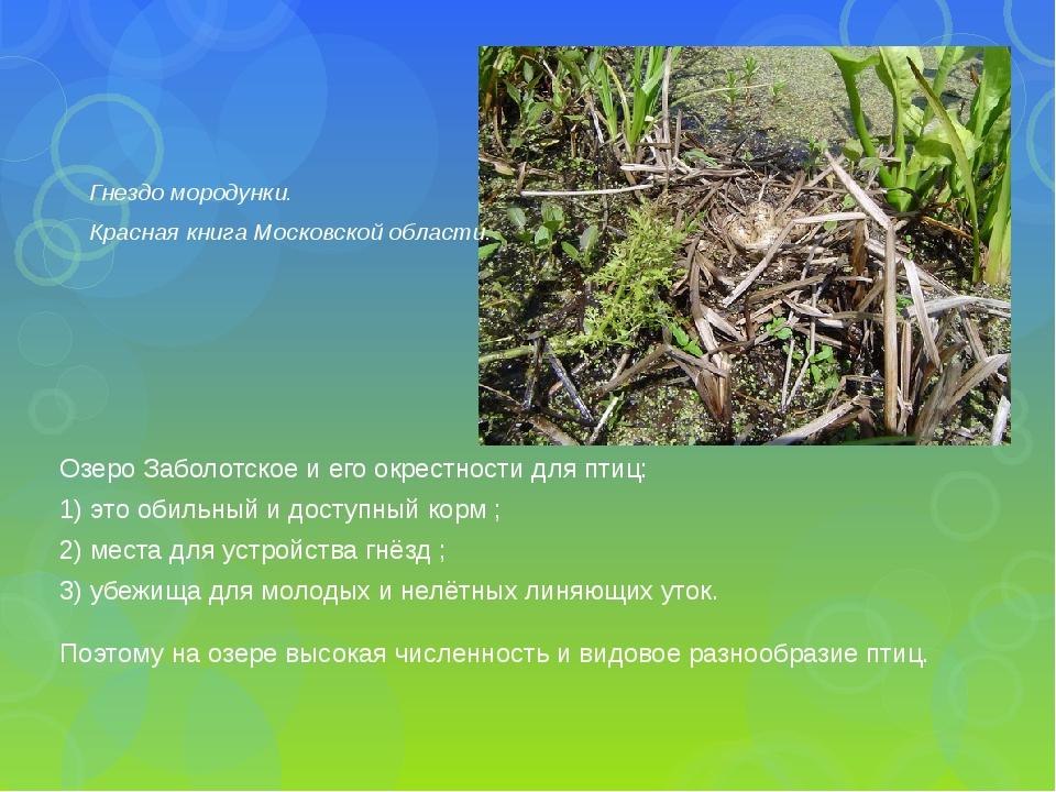 Озеро Заболотское и его окрестности для птиц: 1) это обильный и доступный кор...