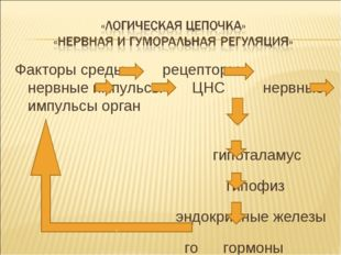 Факторы среды рецепторы нервные импульсы ЦНС нервные импульсы орган  гипота