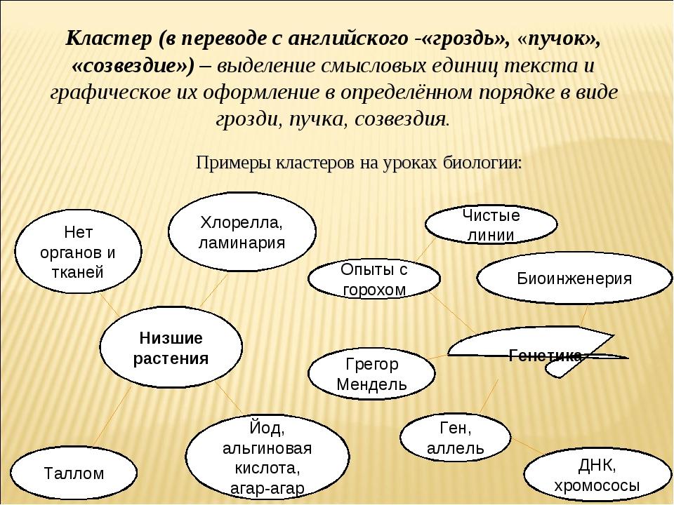 Нет органов и тканей Хлорелла, ламинария Низшие растения Примеры кластеров на...
