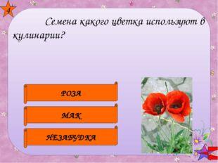 Шиповник Ландыши Рябина 5 После того, как этот цветок отцветает , на месте