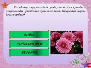 В народе этот цветок зовут полевыми слёзками, искорками, звёздочками, зорьк