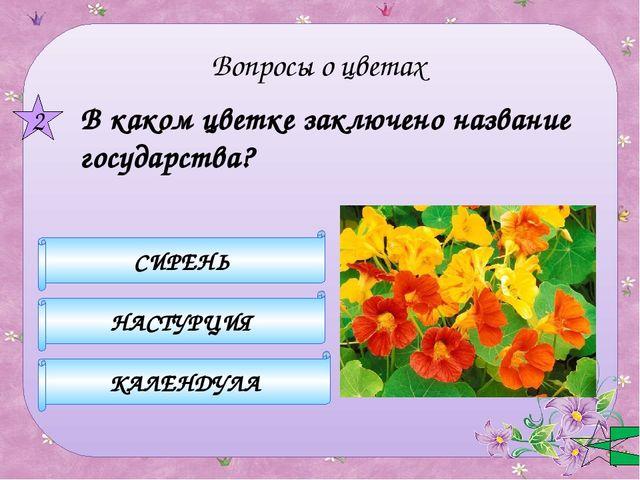 Какой цветок символизирует болтливость? КОЛОКОЛЬЧИК ПОРТУЛАК МИМОЗА 3 Вопрос...