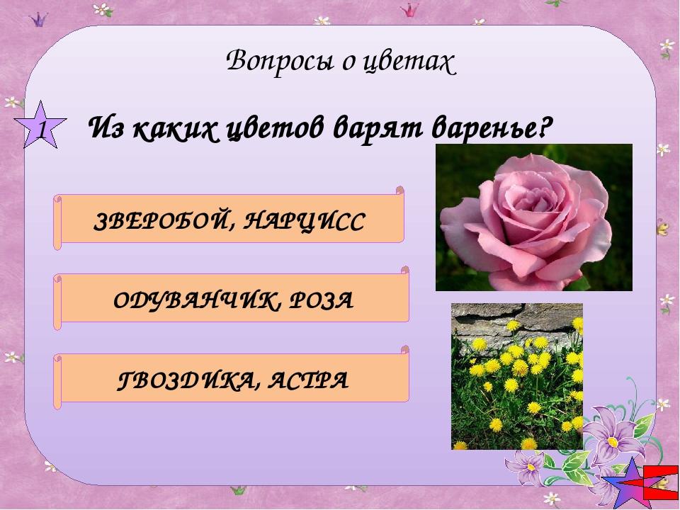 КАЛЕНДУЛА НАСТУРЦИЯ СИРЕНЬ В каком цветке заключено название государства? 2 В...