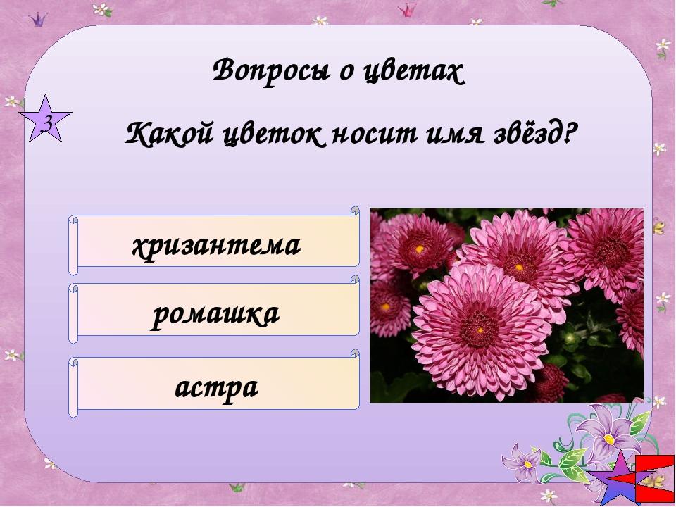 Название цветка – кондитерское изделие КОЛОКОЛЬЧИК ИРИС ТАТАРНИК 5 Вопросы о...