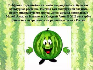 В Африке с древнейших времён выращивали арбузы как культурное растение. Именн