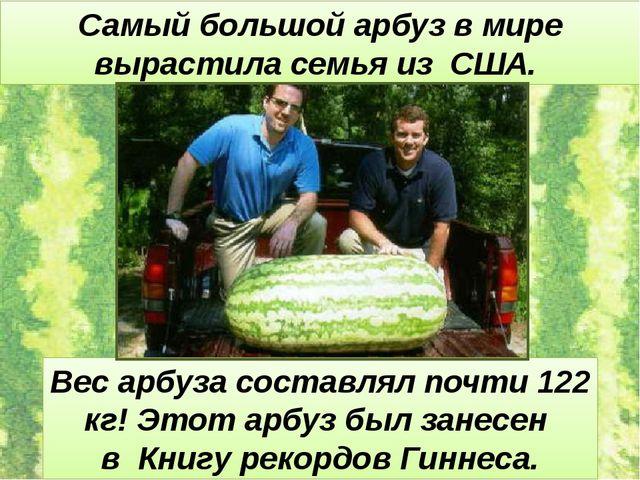 Самый большой арбуз в мире вырастила семья из США. Вес арбуза составлял почти...