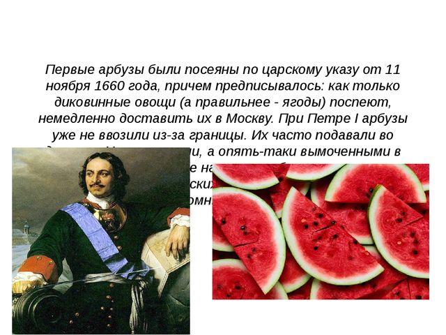 Первые арбузы были посеяны по царскому указу от 11 ноября 1660 года, причем...