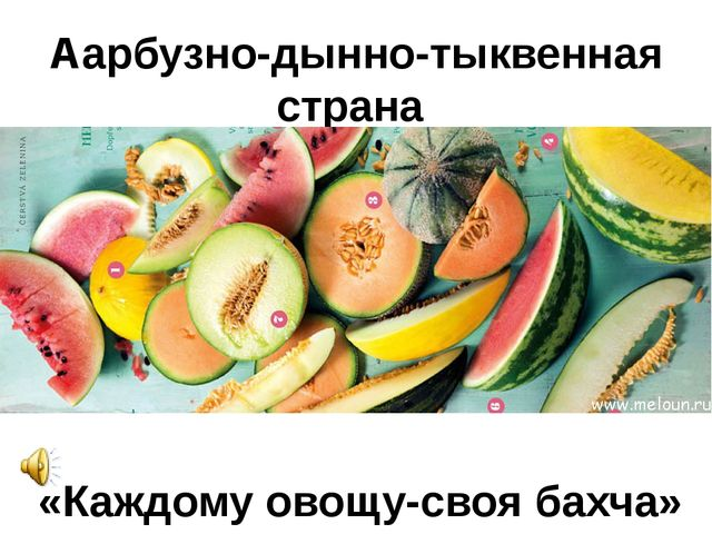 Аарбузно-дынно-тыквенная страна «Каждому овощу-своя бахча»