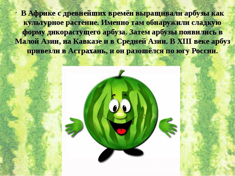 В Африке с древнейших времён выращивали арбузы как культурное растение. Именн...
