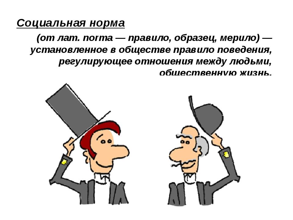 Социальная норма (от лат.norma— правило, образец, мерило) — установленное...
