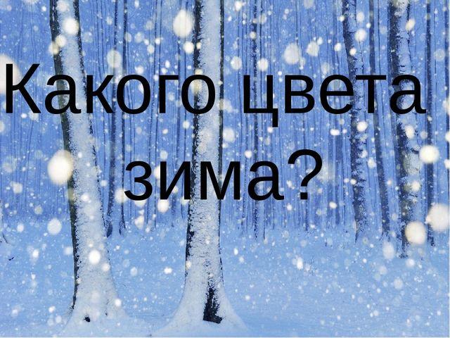 Какого цвета зима?