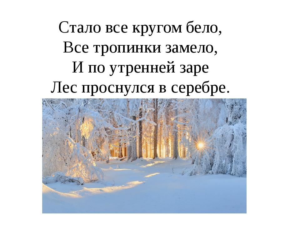 Стало все кругом бело, Все тропинки замело, И по утренней заре Лес проснулся...