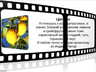 Цитрон Я отношусь к роду цитрусовых, а значит, близкий родственник лимона и