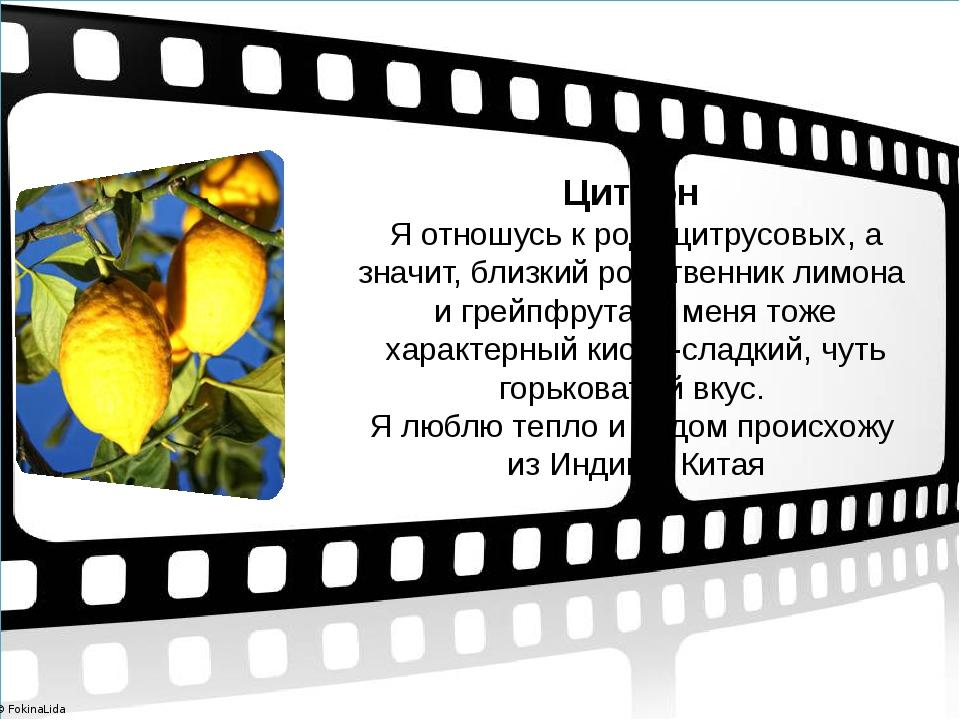 Цитрон Я отношусь к роду цитрусовых, а значит, близкий родственник лимона и...