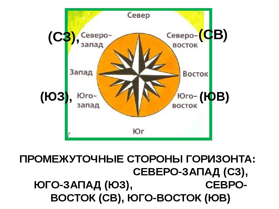 ПРОМЕЖУТОЧНЫЕ СТОРОНЫ ГОРИЗОНТА: СЕВЕРО-ЗАПАД (СЗ), ЮГО-ЗАПАД (ЮЗ), СЕВРО-ВОС...