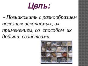 Цель: - Познакомить с разнообразием полезных ископаемых, их применением, со