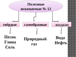 Полезные ископаемые № 12 твёрдые газообразные жидкие Песок Глина Соль Природн