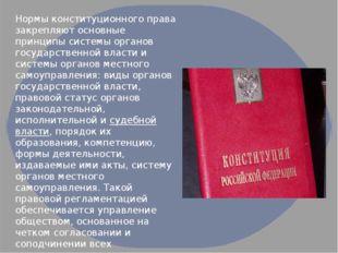 Нормы конституционного права закрепляют основные принципы системы органов гос