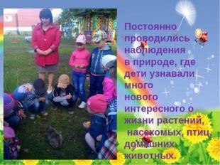 Постоянно проводились наблюдения в природе, где дети узнавали много нового ин