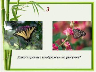 3 Какой процесс изображен на рисунке?
