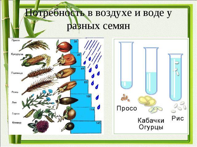 Потребность в воздухе и воде у разных семян