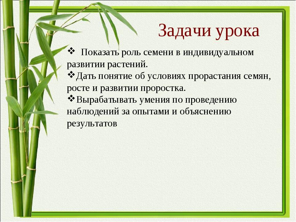 Задачи урока Показать роль семени в индивидуальном развитии растений. Дать по...