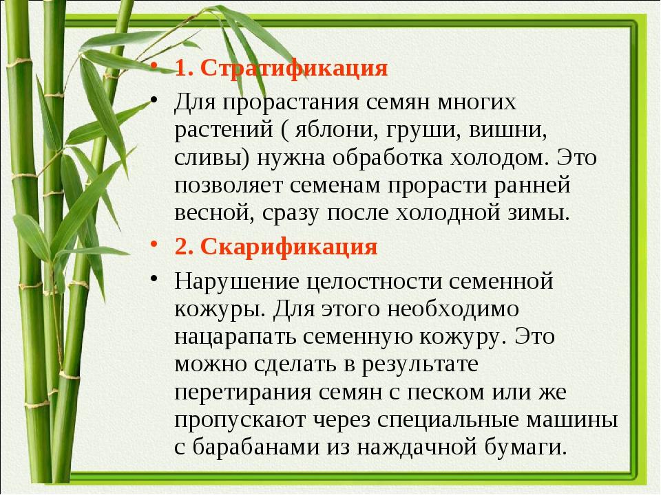 1. Стратификация Для прорастания семян многих растений ( яблони, груши, вишни...