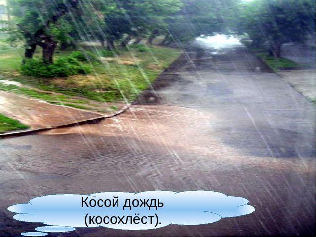Косой дождь (косохлёст).