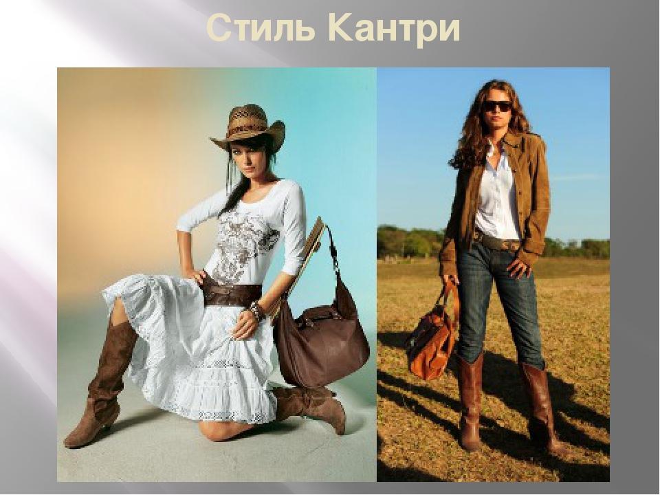 купить одежду для йоркширского терьера в украине