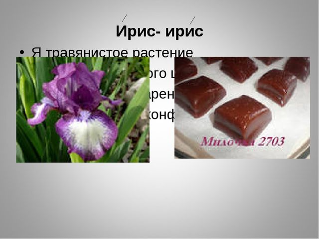 Ирис- ирис Я травянистое растение С цветком сиреневого цвета, Но переставьте...