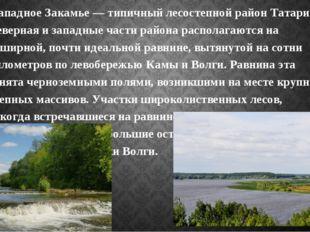 Западное Закамье — типичный лесостепной район Татарии. Северная и западные ч