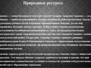 Природные ресурсы Закамье — самая большая из всех трёх частей Татарии. Западн