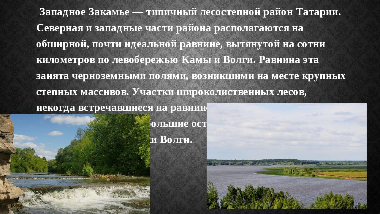Западное Закамье — типичный лесостепной район Татарии. Северная и западные ч...