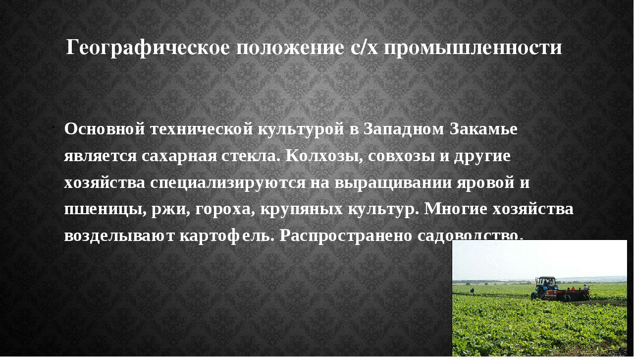 Географическое положение с/х промышленности Основной технической культурой в...