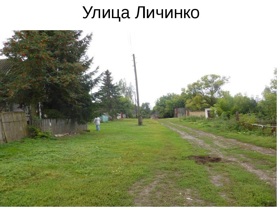 Улица Личинко
