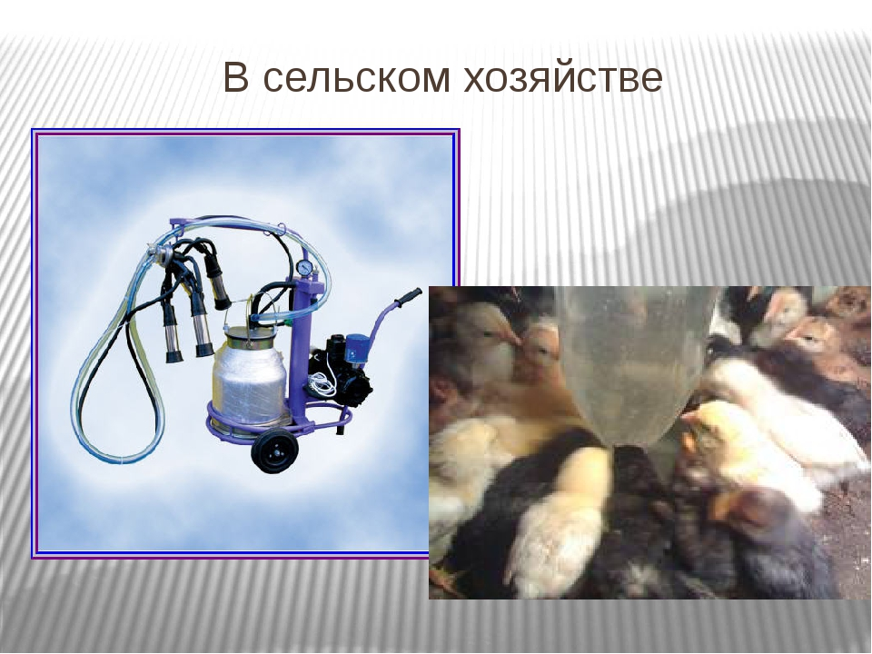 В сельском хозяйстве