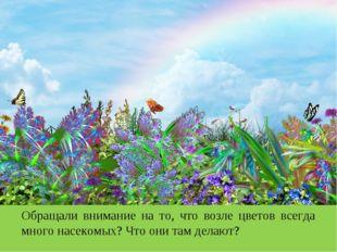 Обращали внимание на то, что возле цветов всегда много насекомых? Что они там
