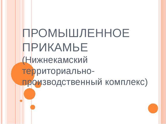 ПРОМЫШЛЕННОЕ ПРИКАМЬЕ (Нижнекамский территориально-производственный комплекс)