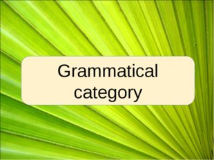 Grammatical category