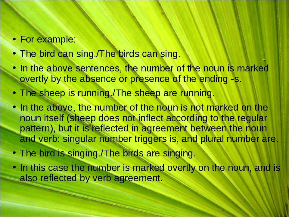 For example: The bird can sing./The birds can sing. In the above sentences, t...